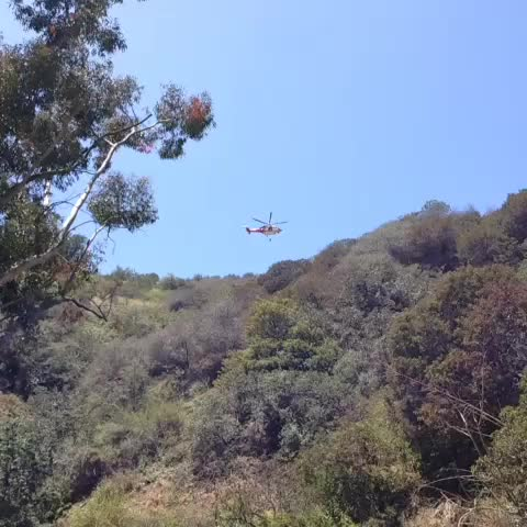 Watch and share Rescue!! GIFs by Daniel Baker on Gfycat