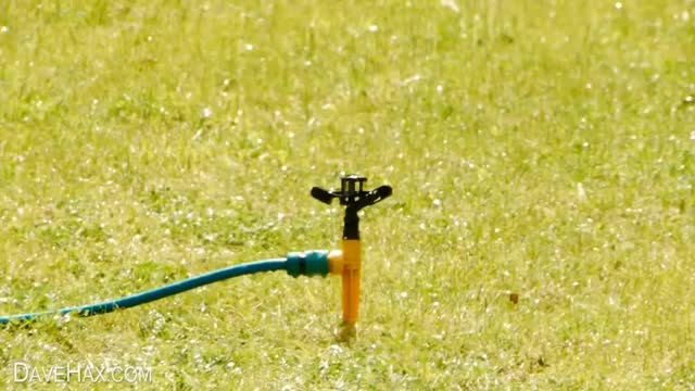 Watch and share Sprinkler GIFs and Homemade GIFs on Gfycat