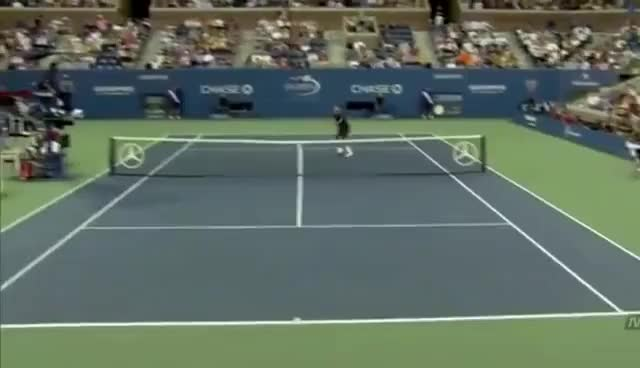 Watch Roger Federer GIF on Gfycat. Discover more Federer, Roger GIFs on Gfycat