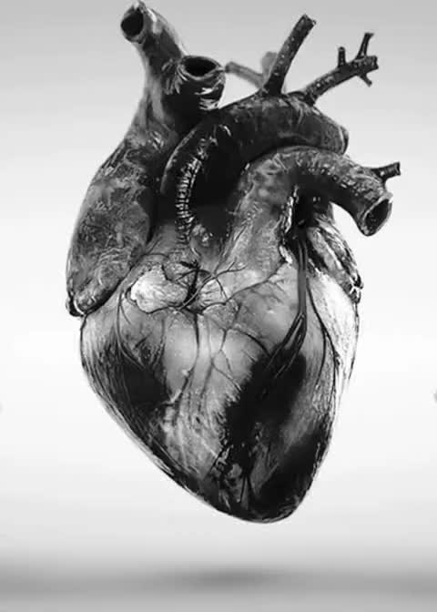 Watch Beating Heart GIF - Find & Share on GIPHY GIF by Ihsan Mughal (@ihsanmughal) on Gfycat. Discover more related GIFs on Gfycat