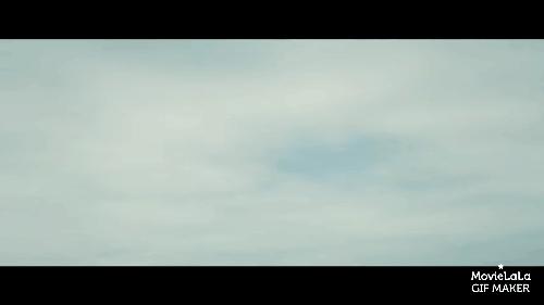 foreveralone, movies, naturegifs, Tulip Fever Trailer GIFs