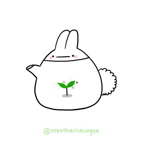 Watch and share Kettle GIFs on Gfycat