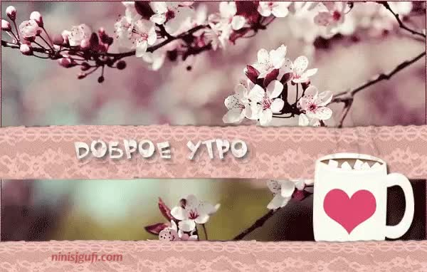 Watch and share Доброе Утро GIFs by ninisjgufi on Gfycat