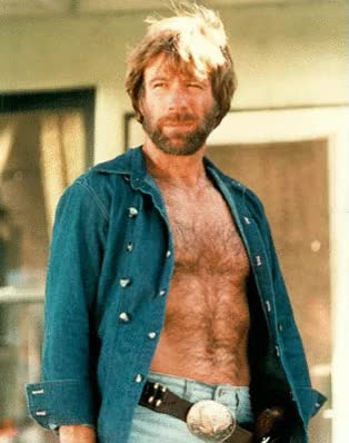 Watch and share Chuck Norris.gif By DogMan93 GIFs on Gfycat