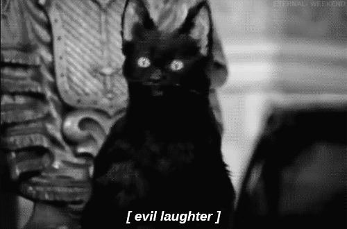 evil, evil laugh, laugh, laughing, lol, muahaha, muahahaha,  GIFs