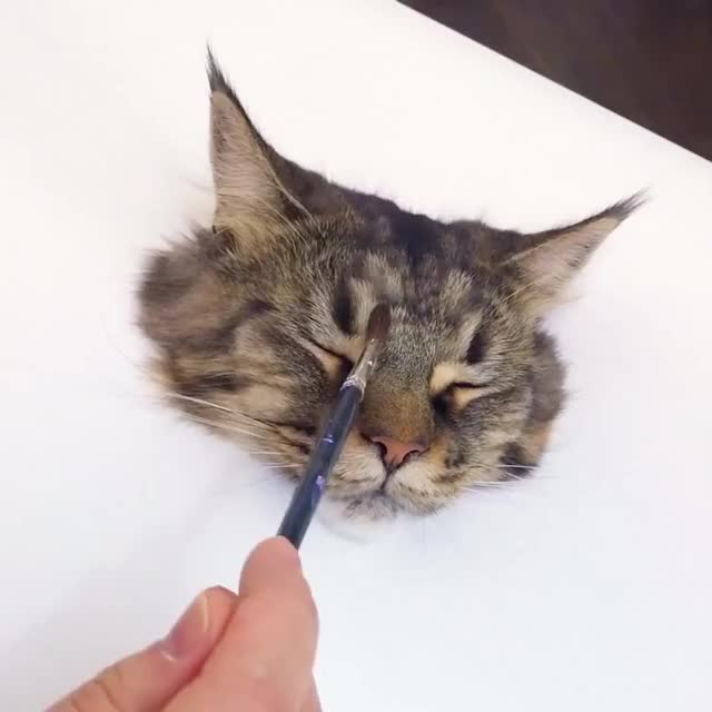 Watch and share Y2mate.com - 3D Painting Of A Cat ViralHog Z-ShhNz 8dI 1080p GIFs on Gfycat