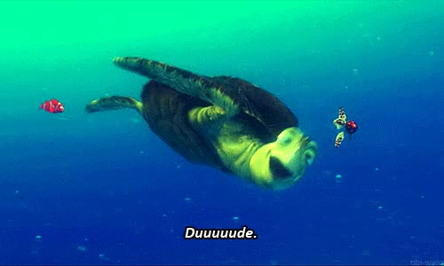 Watch and share Finding Nemo Turtles GIFs on Gfycat