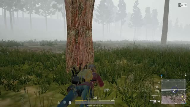 Watch Perfect Timing GIF by @mohingan on Gfycat. Discover more Gaming, PUBG GIFs on Gfycat