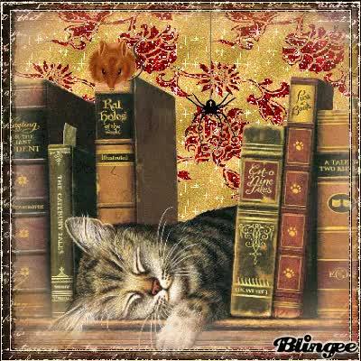 Watch and share Sleep Well Kitty GIFs on Gfycat
