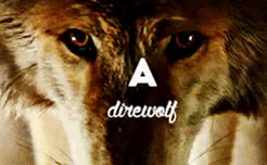 Watch and share Direwolves GIFs and Direwolf GIFs on Gfycat