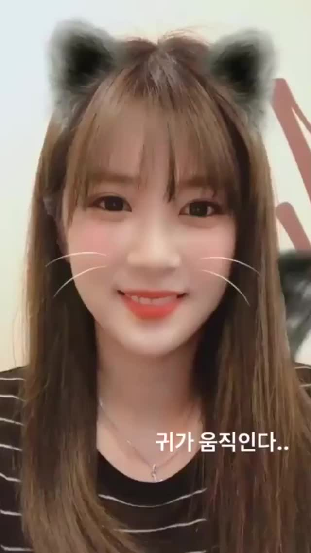 Watch and share Chorong Instagram Story (180905) GIFs on Gfycat