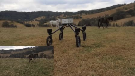 Watch and share Robot Herding GIFs by Popular Science on Gfycat