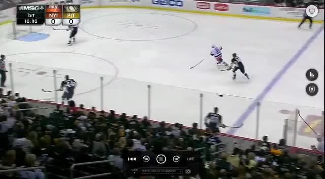 Watch and share Penguins Breakout: Isles Seal GIFs by mjc22 on Gfycat
