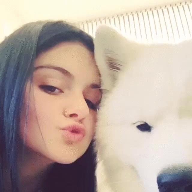 arielwinter, Puppy love [gif] (reddit) GIFs