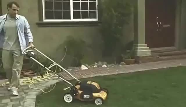 flying lawnmower vine. 398 views flying lawnmower vine