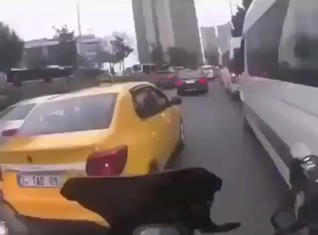 Watch Motorcyclist stops to help a stray dog cross a busy road GIF by tothetenthpower (@tothetenthpower) on Gfycat. Discover more related GIFs on Gfycat