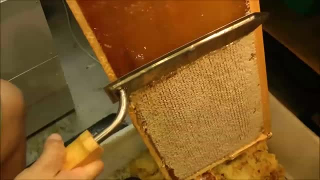 Watch and share Beeswax Processing GIFs and Mahakobees GIFs on Gfycat
