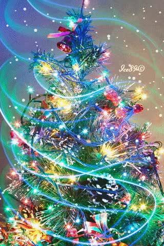 Watch and share Christmas Tree GIFs on Gfycat