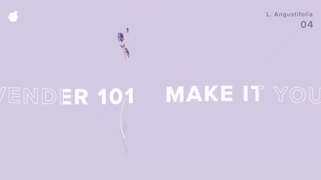 Watch 11111-PLANTS AS MEDICINE A Love Letter to Lavender GIF on Gfycat. Discover more related GIFs on Gfycat