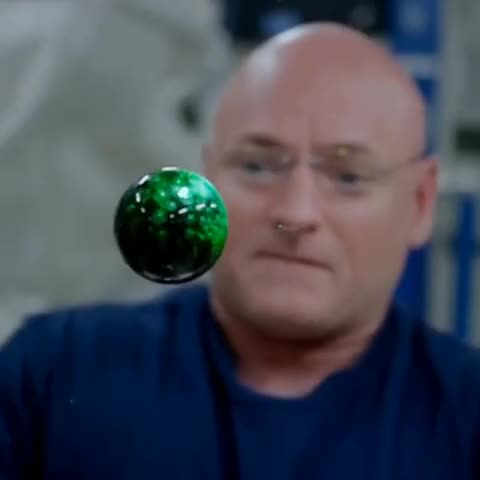 Watch and share Scott Kelly GIFs and Celebs GIFs on Gfycat