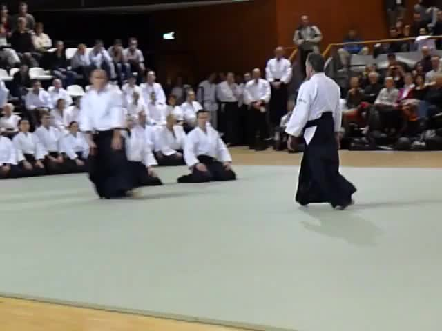 Watch and share Ton Van Der Doelen GIFs and Aikido GIFs on Gfycat