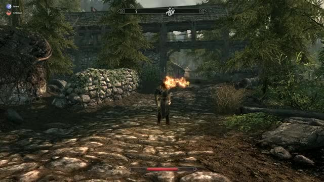 Watch and share Skyrim GIFs by bravebird on Gfycat