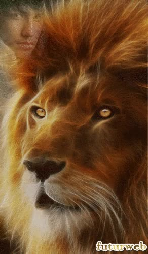 Watch and share Lion GIFs by Saymon Levesvaman on Gfycat