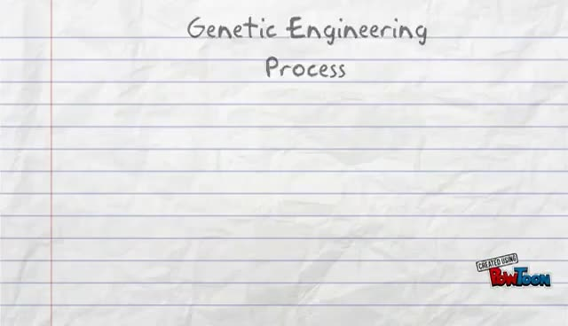 Watch and share Genetic Engineering Process GIFs on Gfycat