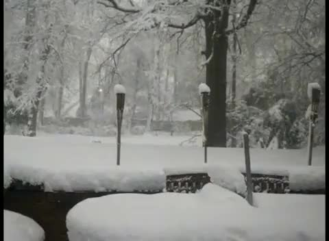 Watch this snow GIF on Gfycat. Discover more interestingasfuck, snow, timelapse GIFs on Gfycat