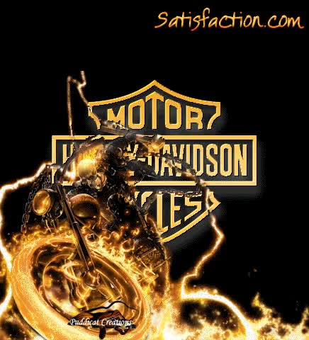 Watch and share Harley Davidson GIFs on Gfycat