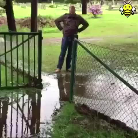 Watch How to avoid a puddle like a boss GIF on Gfycat. Discover more Coolyooo GIFs on Gfycat
