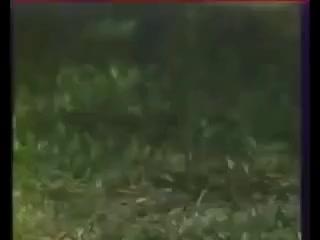 Watch Ninja Trick I GIF on Gfycat. Discover more Clash, HongKong, Ninja GIFs on Gfycat