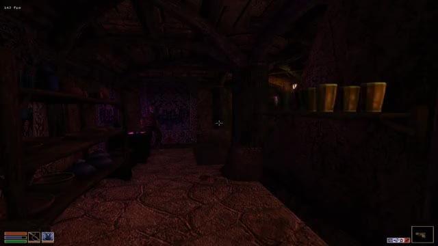 Watch and share Morrowind Has Painful Movement Speeds GIFs by keldran on Gfycat