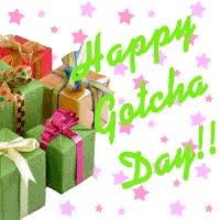 Watch and share Happy Gotcha Day GIFs on Gfycat