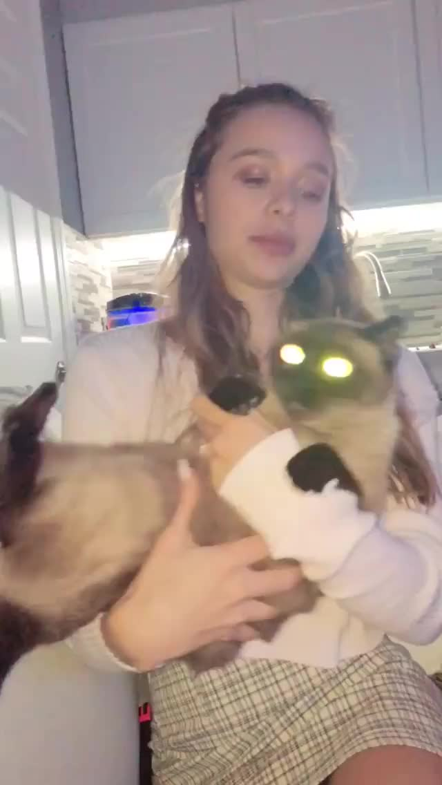 Watch and share Sophie Mudd GIFs by Pams Fruit Jam on Gfycat