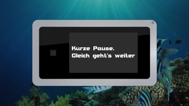 Watch and share Seebaeren Pause GIFs on Gfycat