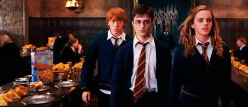 Watch hermione books GIF on Gfycat. Discover more daniel radcliffe GIFs on Gfycat