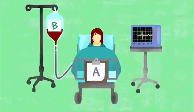 Watch and share Why Do Blood Types Matter? - Natalie S. Hodge GIFs on Gfycat
