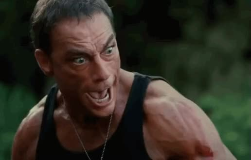 Watch and share Van Damme GIFs on Gfycat