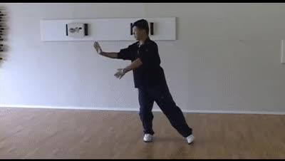 Watch and share Master Chen Zhen Lei, (Chen Style): GIFs on Gfycat