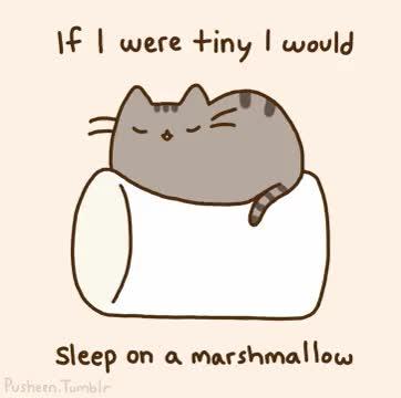 Watch and share Marshmallow Pusheen Cat Gif GIFs on Gfycat