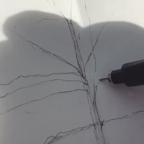 art, drawing, drawing, pen, satisfying, sketch, tree, Tree sketch GIFs
