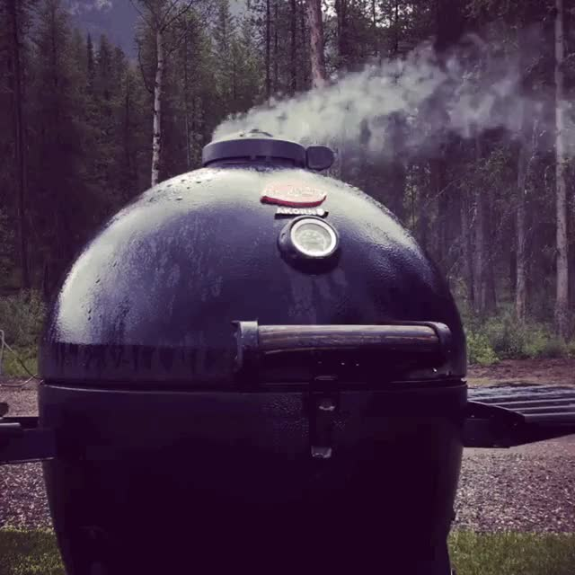 Watch bbq GIF by @henryhardcore on Gfycat. Discover more related GIFs on Gfycat