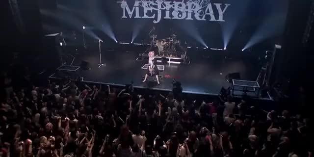 Watch and share Mejibray - 羽花 - Akasaka Blitz Live Encore GIFs on Gfycat