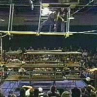 Watch and share Tommy Dreamer And Brian Lee In The Scaffold