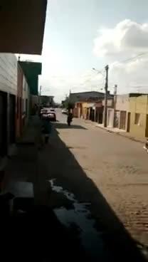 Watch Não Basta Cair... Tem Que Levantar Com Estilo GIF on Gfycat. Discover more related GIFs on Gfycat