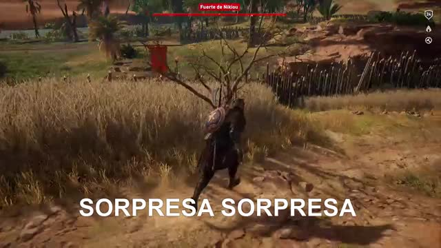 Watch sorpresa sorpresa  GIF by Gamer DVR (@xboxdvr) on Gfycat. Discover more AssassinsCreedOrigins, Keops 007, xbox, xbox dvr, xbox one GIFs on Gfycat
