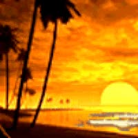 Watch and share Tropical Sunset Beach GIFs on Gfycat