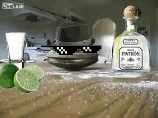 Watch and share Clam Takes A Tequila Shot (i..com) GIFs on Gfycat