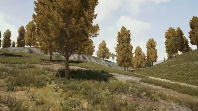 Watch Auzom Finals  GIF by iamLry (@iamlry) on Gfycat. Discover more PUBATTLEGROUNDS GIFs on Gfycat
